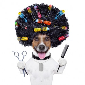 Natural Pet Grooming Products